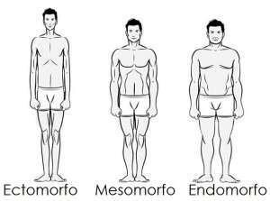 consejos-importantes-para-endomorfos