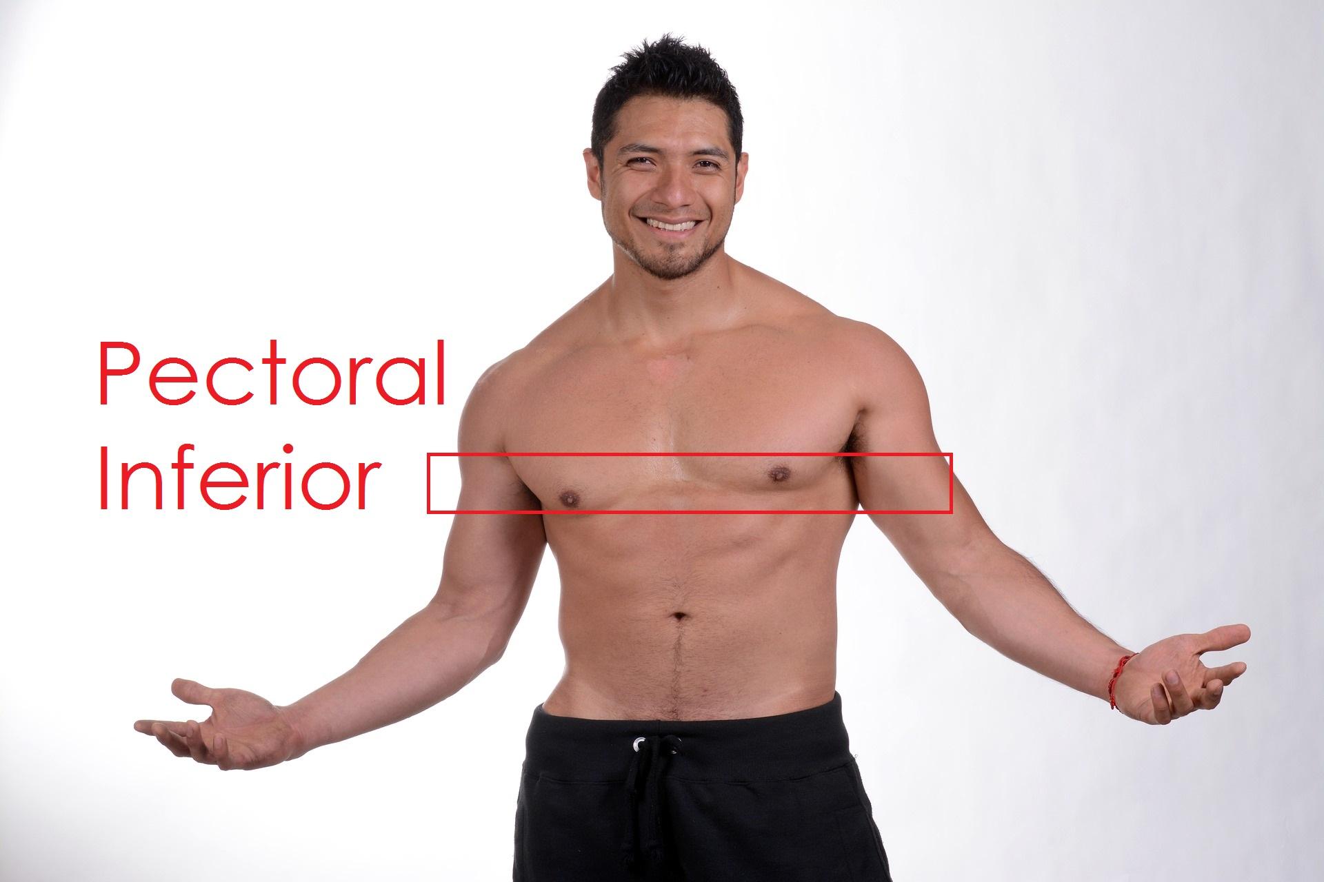 ejercicio-pectoral-inferior