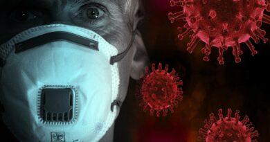 Alimentos que debes consumir para fortalecer tu inmunidad frente al coronavirus