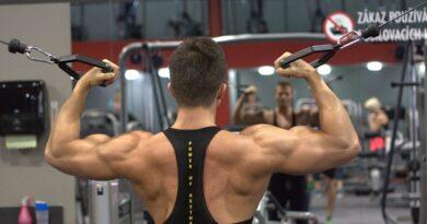Entrenamiento en casa para espalda musculosa